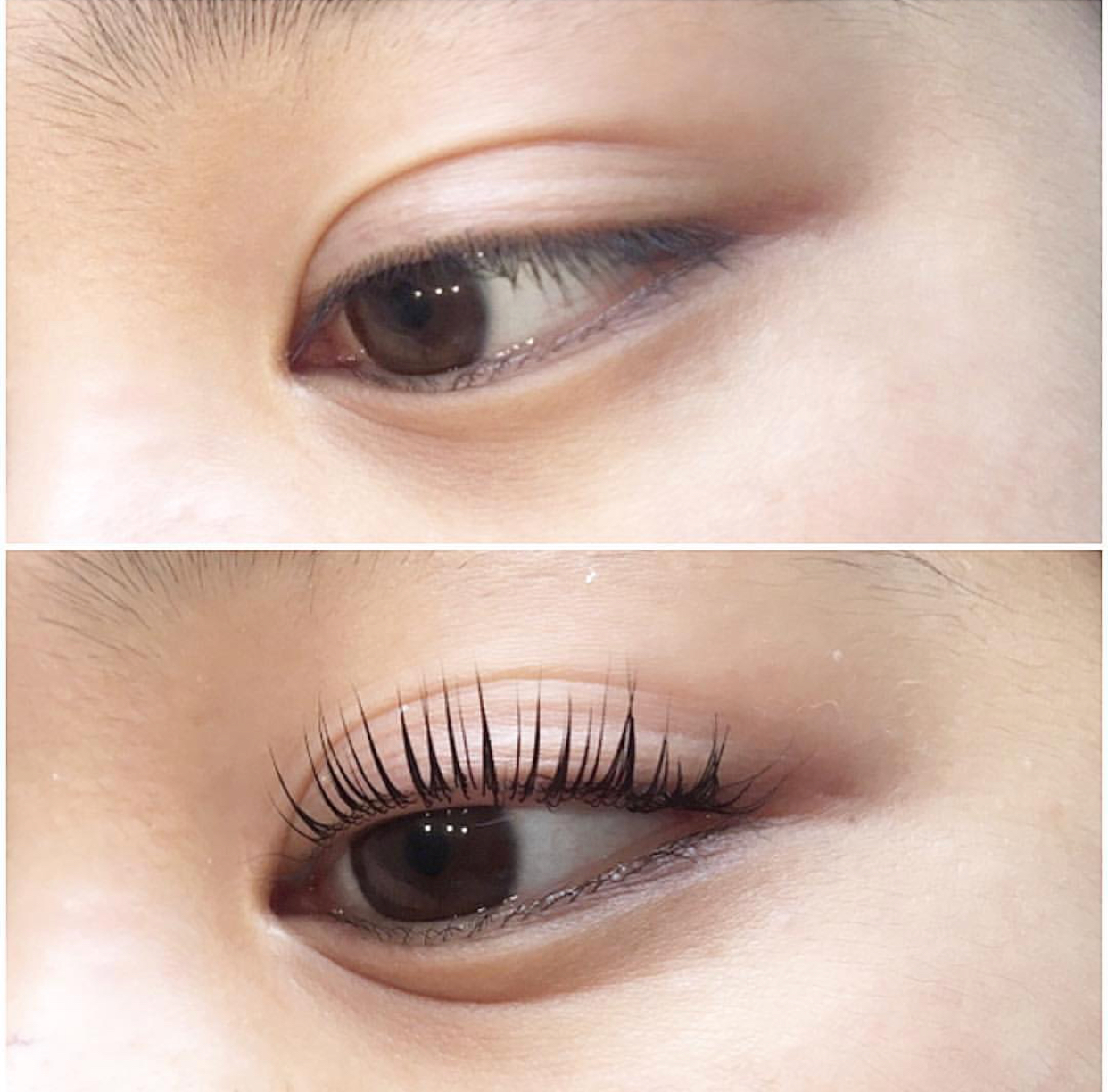 Lash Lift The Revolution In Eyelash Perming Beauty Bronze